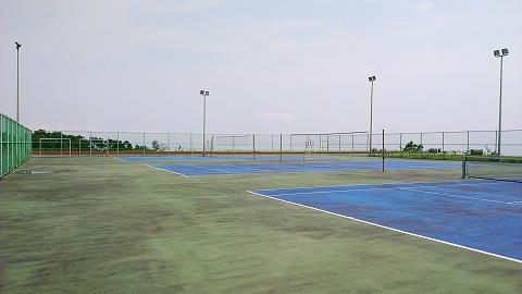 室外排網球場